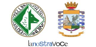 Avellino, Guardia, Finanza